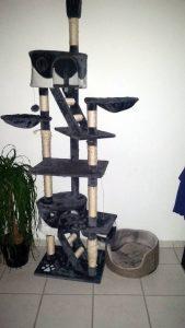 Kratzbaum komplett